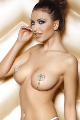 Nipples Strass
